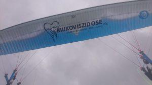 ref_mukoviszidose